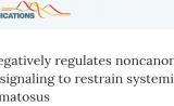肖意传组报道系统性红斑狼疮病理调节的新机制 | Nature子刊