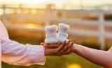 山大生殖医学团队Am J Hum Gene发表新研究,为女性不孕症的诊治提供新证据