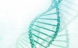 《二代测序技术在血液肿瘤中的应用中国专家共识》发布!