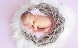 PNAS:午睡妨碍唐氏综合症儿童的学习能力
