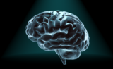 求知若渴还是无知是福?PNAS给出答案:大脑会自行判断