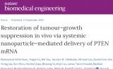 首个!纳米技术介入抑癌基因在前列腺癌中取得突破进展|Nature子刊