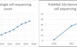 3篇高分文章,10x Genomics带你玩转分化再生研究