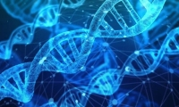 穷不仅影响健康,还会改变基因,多达8%!