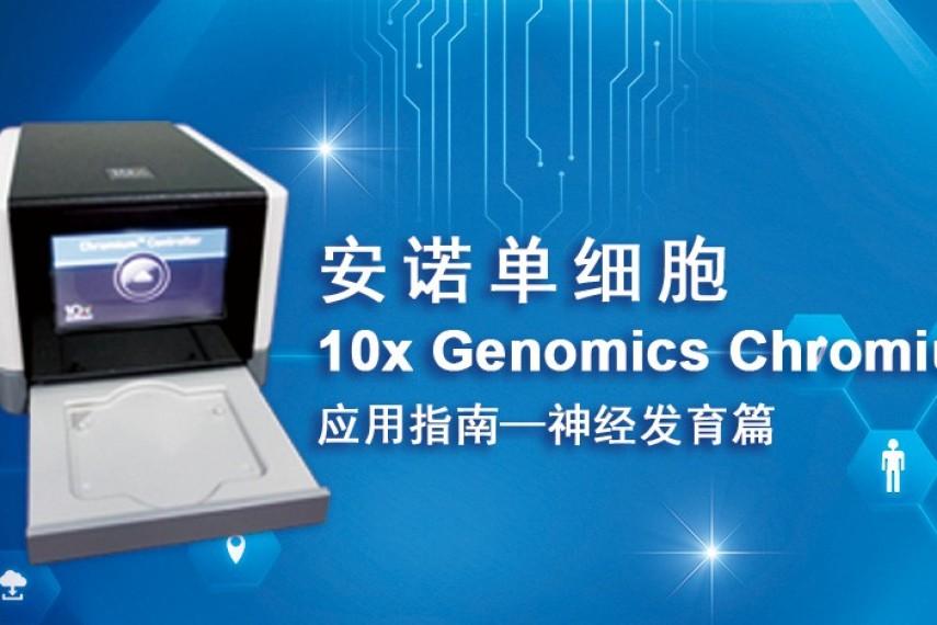 安诺单细胞10x Genomics应用指南-神经发育篇