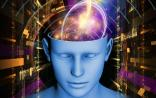 Neuron逆天研究:用脑成像预测人类未来行为