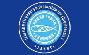 2013全国斑马鱼敲基因联盟第二次学术会议
