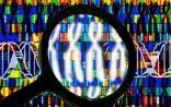 千山药机:基因测序概念助一路走强 定增募资12亿补血