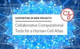小扎夫妇承诺资助1500万美元!开发支持人类细胞图谱的工具和数据集