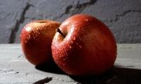 一天一苹果,最强大脑靠近我!新研究发现,苹果还能促进神经元分化!