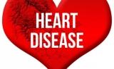 PNAS:基因缺陷如何导致先天性心脏畸形