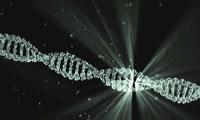 【7.16 讲座直播】孔祥东:纳米孔测序技术在结构变异中的检测与应用