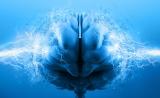 北京脑科学与类脑研究中心正式成立,饶毅为法人代表