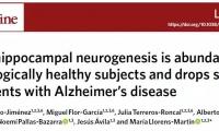还有希望!《自然·医学》发现脑细胞到90岁还能新生