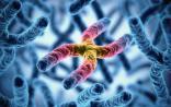 """""""生命科学突破奖""""得主Science发文:特殊染色体会抑制癌症免疫应答"""