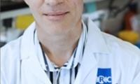Cancer Cell:5000种药物测试,旧药改造助力白血病治疗