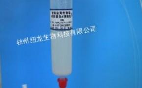 重组耐碱蛋白A琼脂糖凝胶