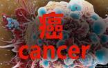 震惊!FDA批准的抗癌新药74%没用