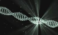 深圳三院与华大研究院揭示:新冠患者症状严重程度与遗传因素有关