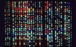 ctDNA精准测序难点新突破