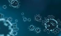 抗击新型冠状病毒 间充质干细胞如何发力?