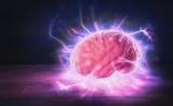 新证据!阿尔兹海默症致病蛋白会传播