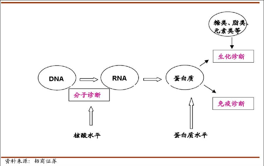 中国体外诊断行业深度报告(上)