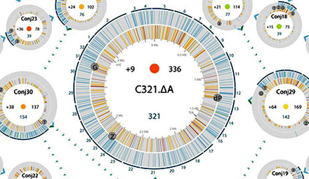 新基因组能限制病毒用来感染细胞的一种天然蛋白质的