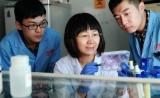 中国农科院研究员陈化兰当选中国科学院院士