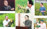 """那些研究水稻的""""大佬""""们"""