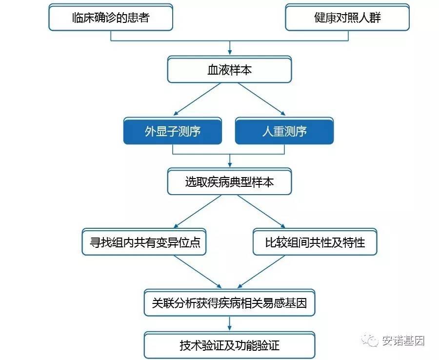 图3 基于关联分析的复杂疾病基因组研究策略