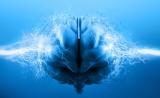 人类大脑如何衰老?怎样阻止衰老?看这2篇里程碑研究