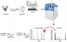 蛋白研究系列专题2-质谱技术|金开瑞生物