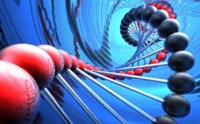 基因测序服务