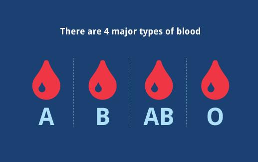 血型与性格有关系吗?
