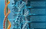 某些基因突变对肺癌病人是好事