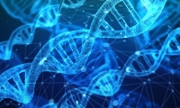 Science子刊:靶向CAPN9具有抑制多種組織纖維化的治療潛力