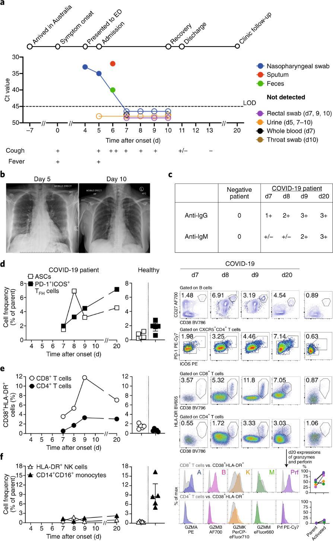 科學家首次繪制出人體對新冠病毒的免疫反應圖譜