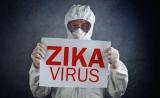 清华程功组Nature揭示寨卡病毒感染暴发机制——附专家点评