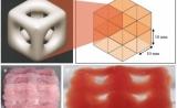 這種新型低溫3D打印,產品可模仿大腦和肺部特性