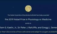 """""""氧感知通路""""获2019年诺贝尔生理学或医学奖"""