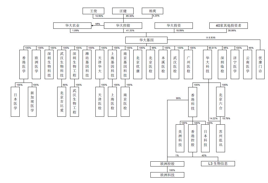企业高管结构图