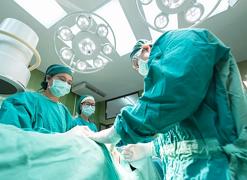 nature:科学家发现使血液移植更安全的方法――靶向破坏干细胞