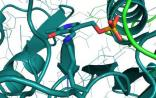 Nature子刊:蛋白单分子测序技术问世