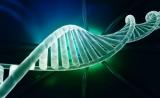 Nature Methods:全面检测CRISPR脱靶效应的新策略