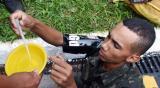 路透:巴西拟用伽马射线让雄蚊