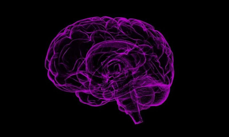 """亦正亦邪,星形胶质细胞与老年痴呆的""""爱恨情仇"""""""