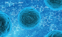 科学家绘出人类与病毒蛋白质间作用图谱,揭示病毒感染人机制