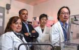 Nature:缺氧促进小鼠心脏再生 | 附5年研究历程