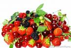FNS:多吃多酚食物有助于抗老化